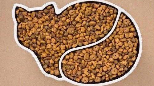 如何选择适合猫咪的猫粮