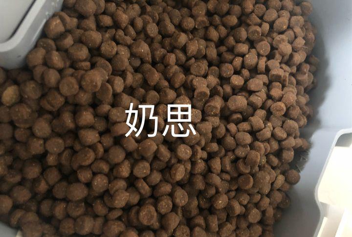 简叔猫粮和奶思猫粮都是鲜肉粮,价格相差很多,哪个更好?