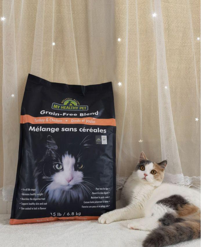 猫怎么吃才能比较健康?平时养猫要注意些什么?