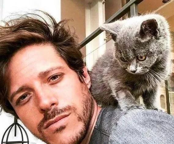 一个人喜不喜欢猫,看这6点就行了,太明显了