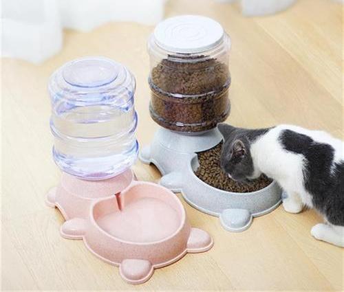 宠物自动喂食器真的有用吗?
